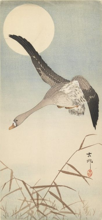 Goose Flying in Moonlight by Ohara Koson, early 20th century woodblock